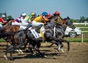Вице-губернатор Андрей Коробка призвал популяризировать конный спорт на Кубани