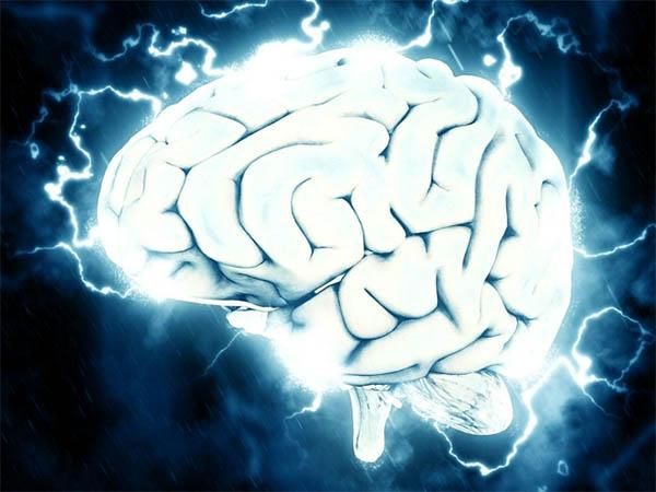 мозг, удовольствие, человек