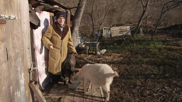 В Хадыженске 79-летнего заблудившегося мужчину козы спасли от холода
