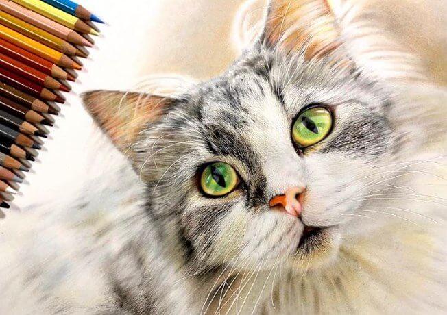 портреты кошек, гиперреалистичные