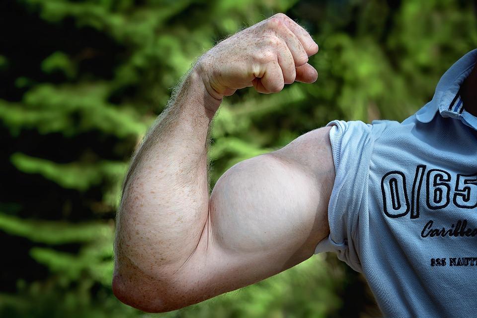 тренировки, мышц, мышцы