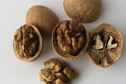 орех, ученые, грецкие орехи
