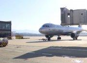 В аэропорт Сочи планируют закупить современное оборудование для разгона птиц