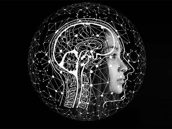 мозг, упражнения, когнитивные функции, мозга
