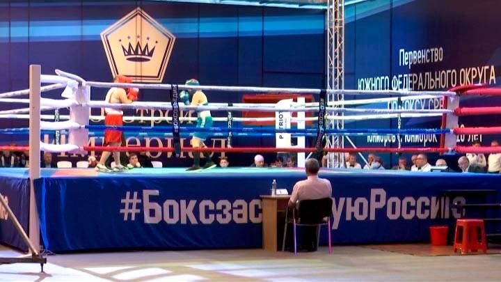 На Кубани 100 молодых боксеров поборются за звание лучших в ЮФО