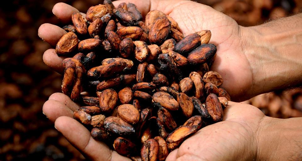 Какао помогает снять боль в ногах при ходьбе