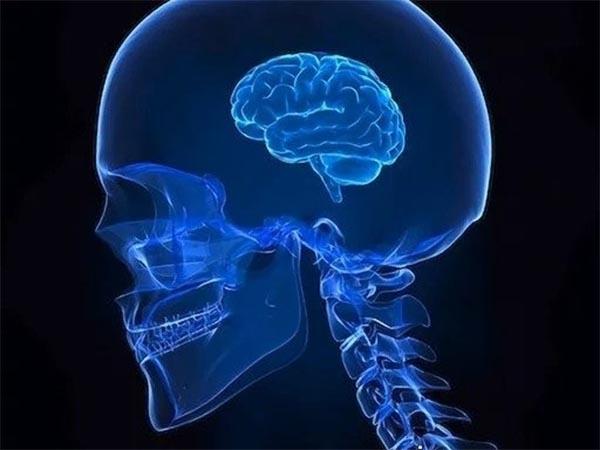 Ученые просканировали мозги хулиганов и нашли одну общую черту