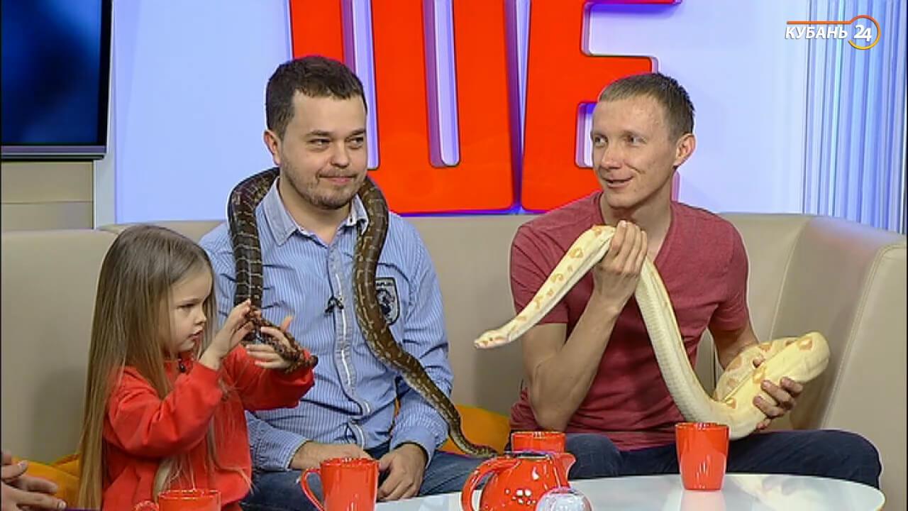 Сергей Салата: змеи могут не есть до пяти месяцев из-за сезона спаривания