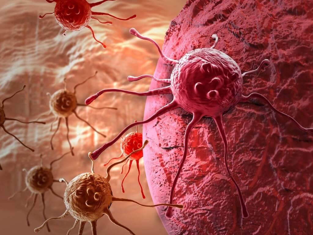 рак, климат, климате, онкология