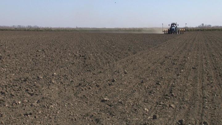 В Славянском районе под сою планируют отдать 15 тыс. га полей