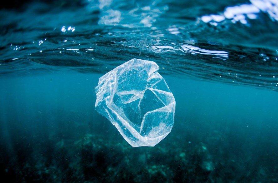 биопластик, быстроразлагающийся пластик, растительное сырье