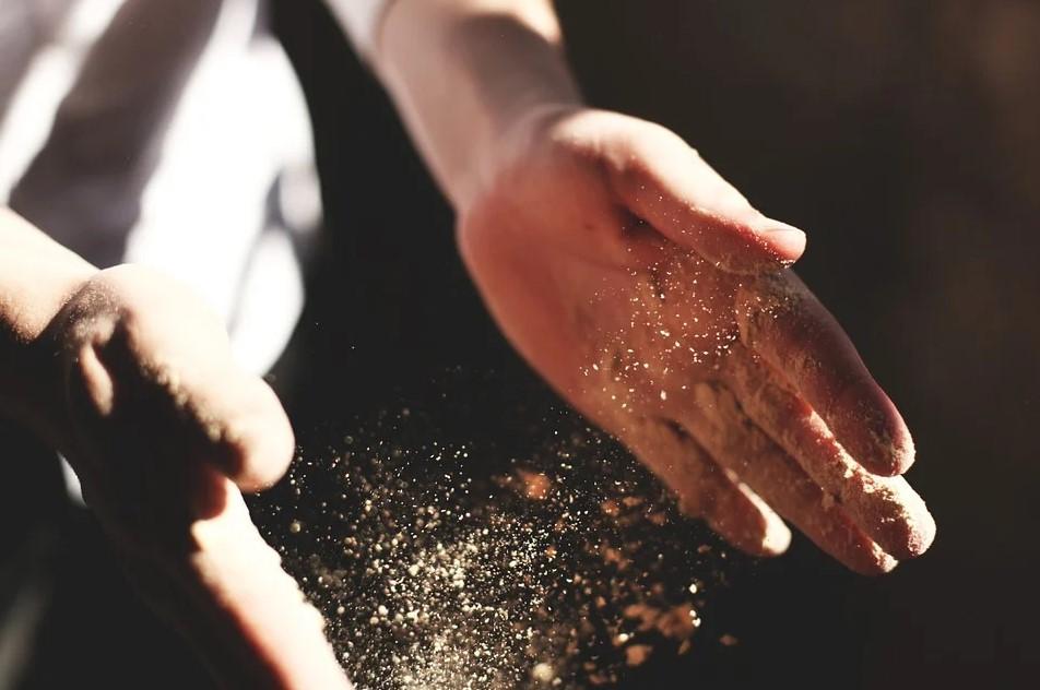 пыль, ожирение, ученые