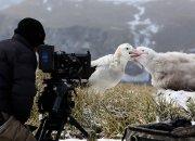 10 документальных фильмов Netflix обо всем на свете