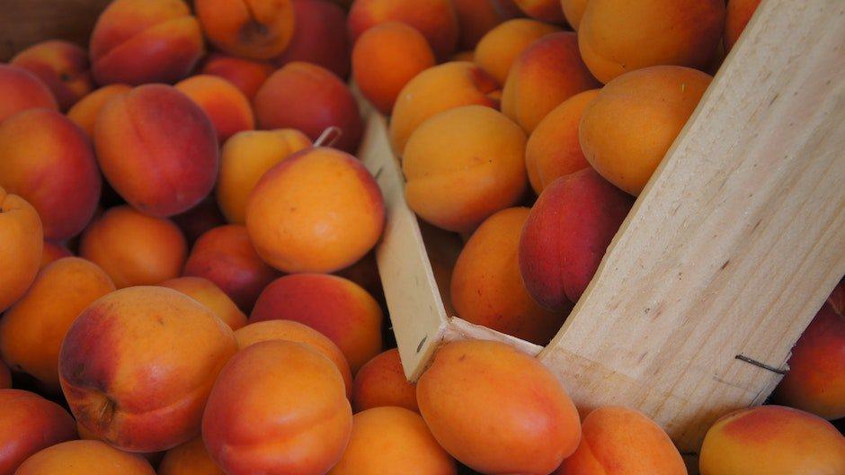абрикосы, диетолог стародубова