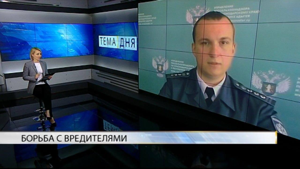 Валерий Немченко: мраморный клоп очень вредоносен