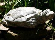 В Мостовском районе умелец вырезает из камня фигуры животных