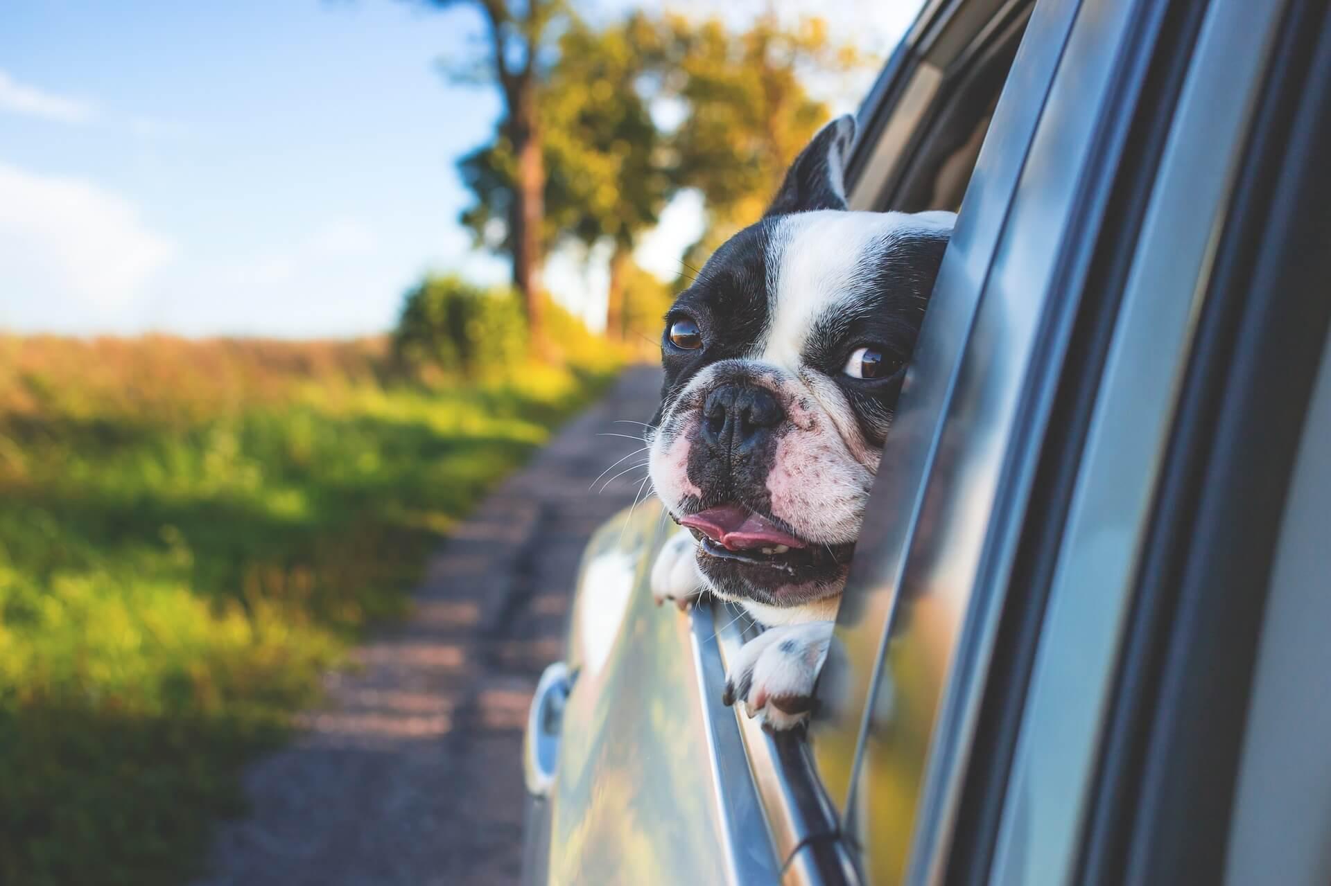 Как пережить жару в машине без кондиционера: народные методы