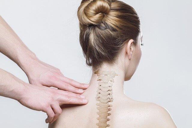 спина, поясничный отдел