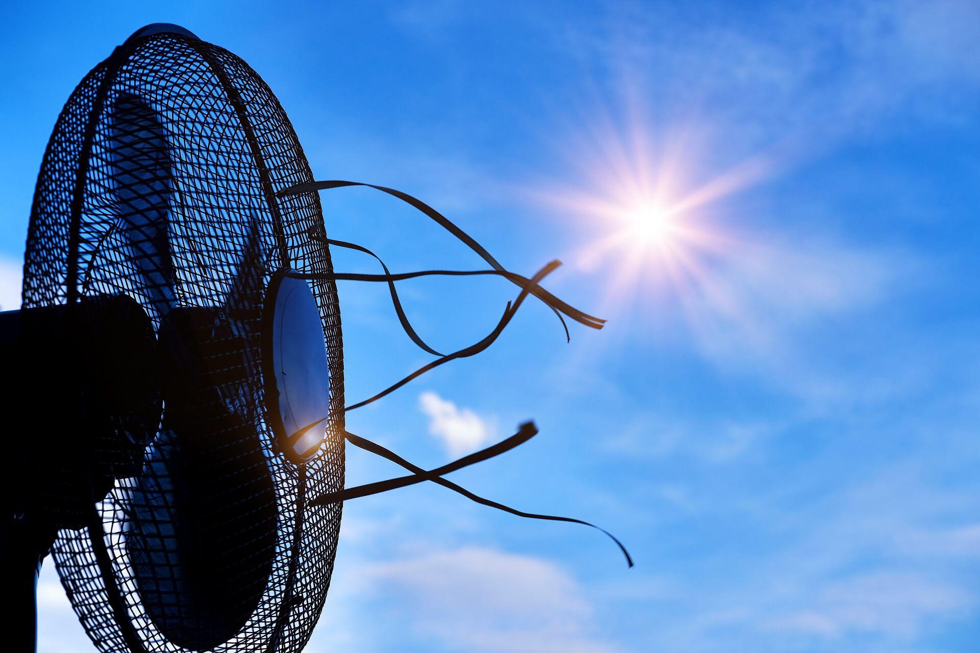 Кубанская жара: как себя обезопасить?