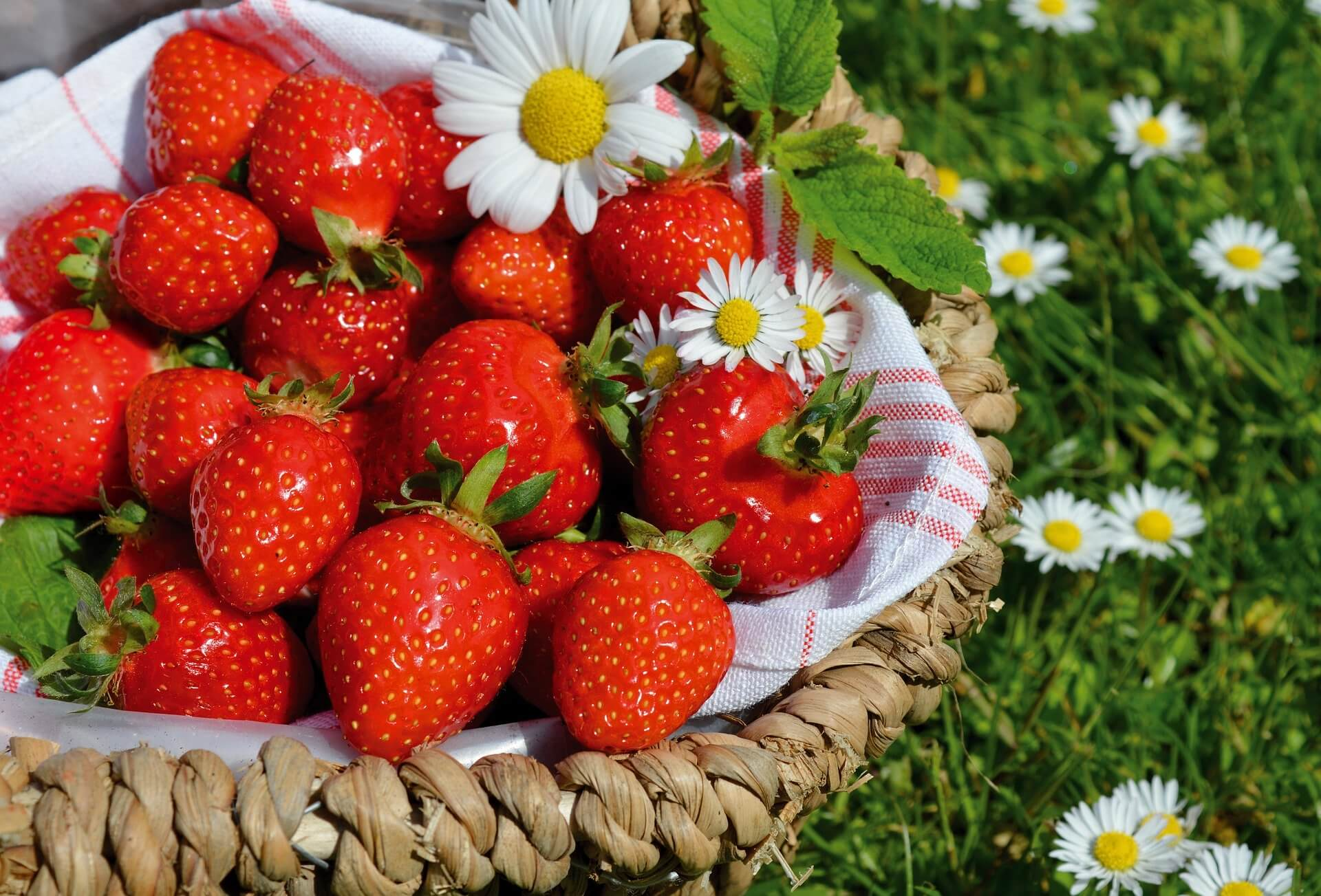 Как выбрать клубнику: чем ярче, тем больше витаминов