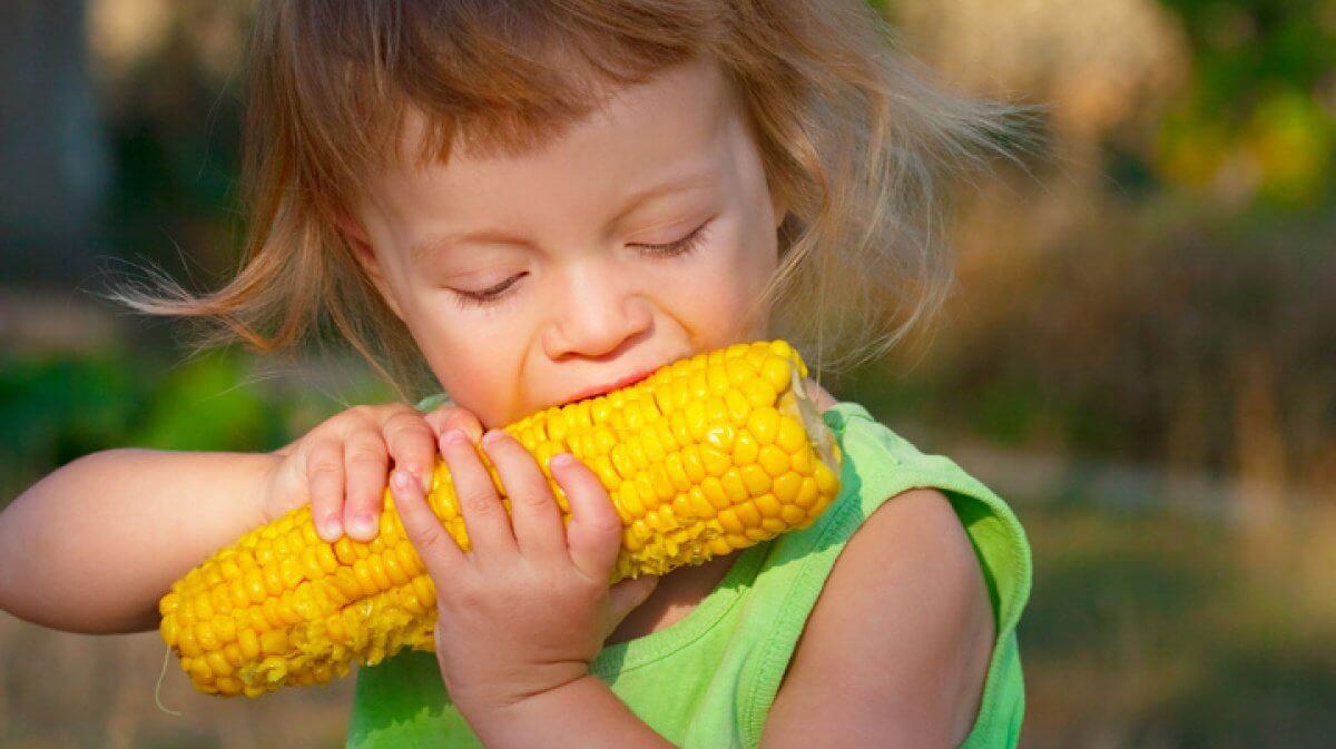 Польза и вред молодой кукурузы: кому лучше отказаться от летнего лакомства