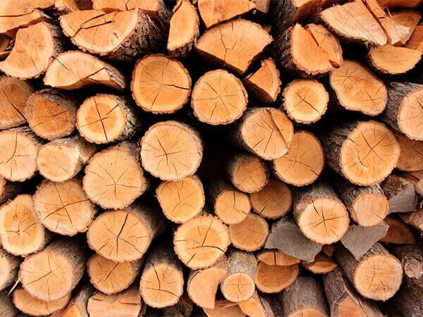 В Апшеронском районе «черный лесоруб» вырубил деревьев на 3,6 млн рублей