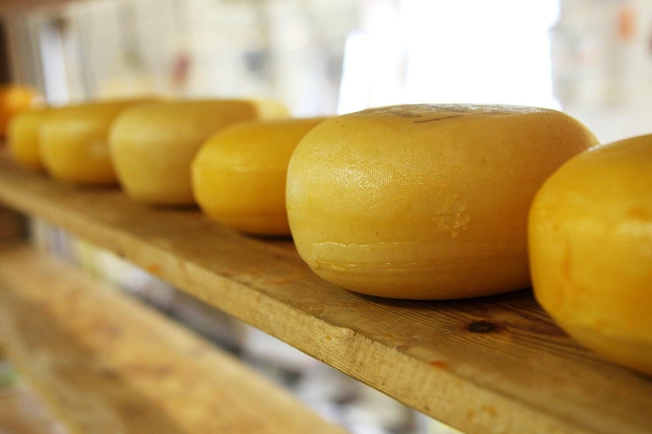 качественный сыр, сыр, сухое молоко