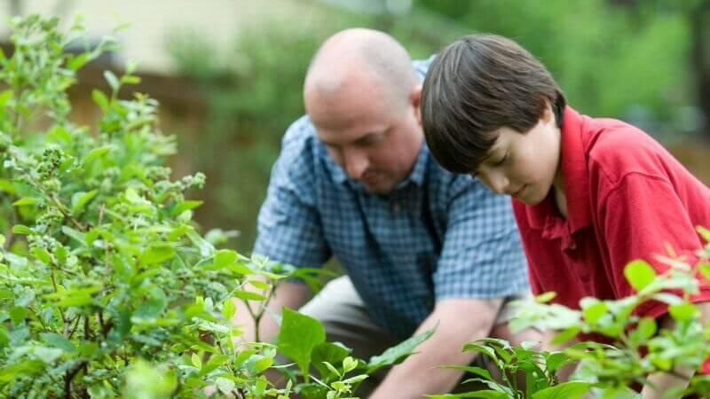 Профилактика рака: какие овощи и ягоды препятствуют развитию опухолей