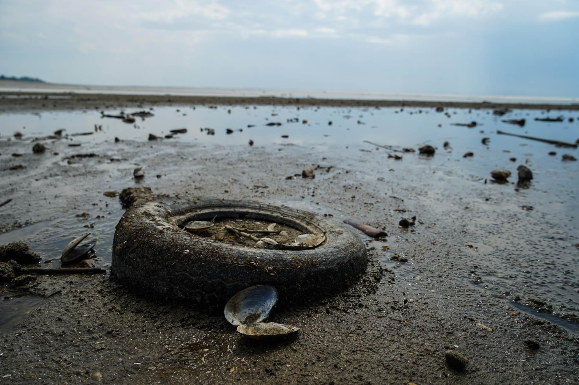 Засуха: как сейчас выглядит обмелевшее Краснодарское водохранилище. Фото