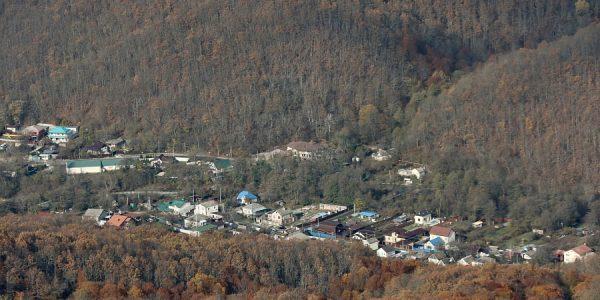 В Крымском районе по поручению Кондратьева проверят застройку лесного фонда