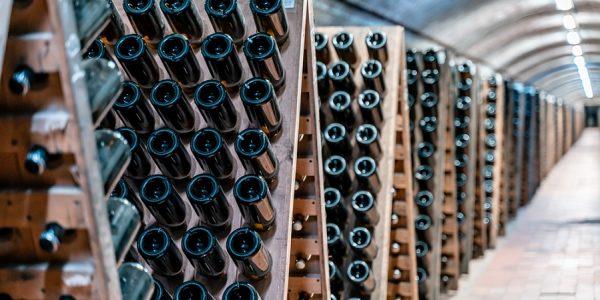 Кубанские винодельни включат в путеводитель «Винные дороги Боспорского царства»