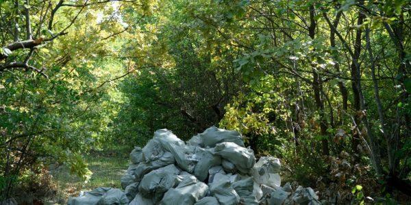 В Краснодаре с начала года обнаружили и ликвидировали 220 незаконных свалок