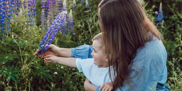 День матери: молодой праздник вечных ценностей