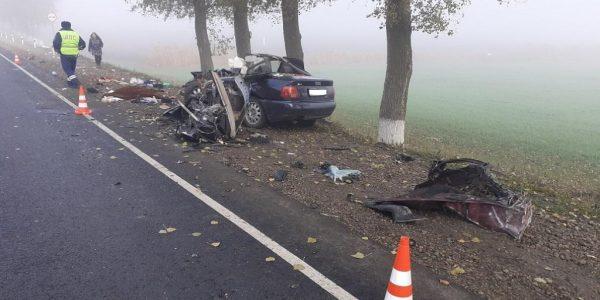 На Кубани во время тумана в ДТП с грузовиком погибла девушка