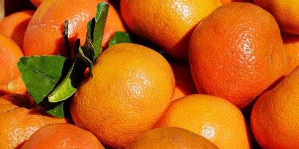 Экспорт цитрусовых из Абхазии за два месяца побил показатели прошлого года