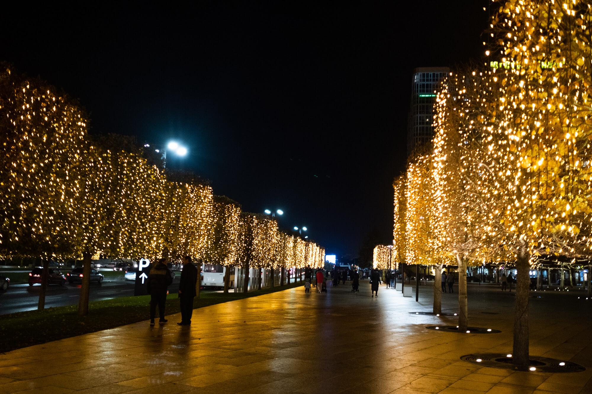В парке «Краснодар» включили новогоднюю иллюминацию. Фоторепортаж