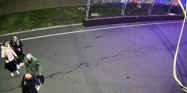 В Анапе компания парней и девушек повредила городскую новогоднюю елку