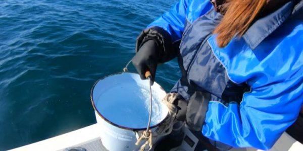 В Сочи экологи взяли пробы воды из Черного моря в местах прохождения канализации