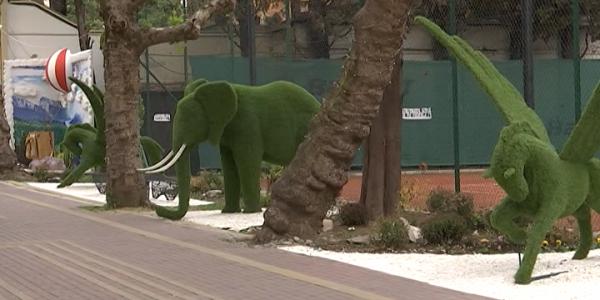 Два парка Сочи признали лучшими на конкурсе «Хрустальное колесо»