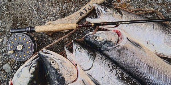 В РФ с 5 декабря вступит в силу закон, контролирующий вылов и перегрузку рыбы