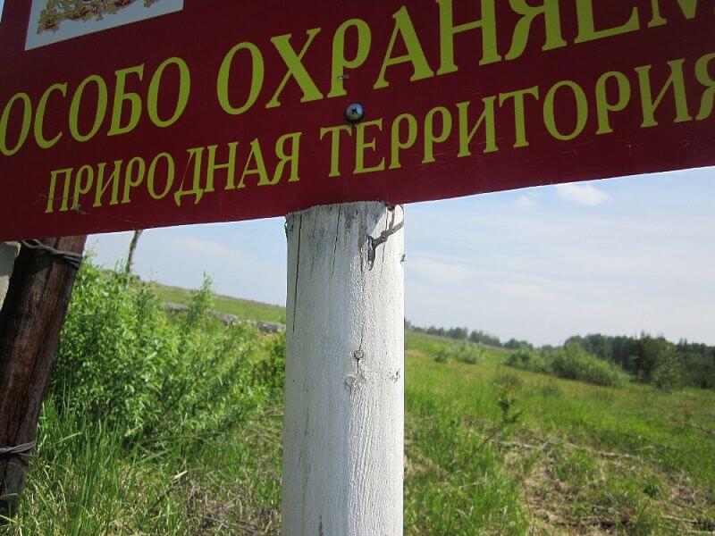 С 2016 года количество зеленых зон на Кубани увеличилось в 1,4 раза