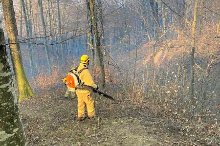 В горах Сочи ликвидировали два возгорания лесной подстилки