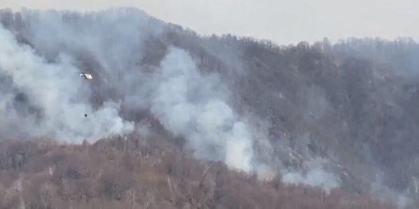 В Сочи продолжают тушить лесные пожары при помощи авиации