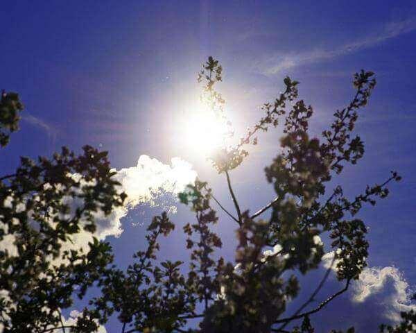 На Кубани в ближайшие дни прогнозируют «весеннюю погоду»