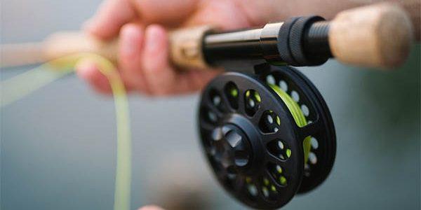 На Кубани с 1 февраля запретят ловить рыбу в трех лиманах