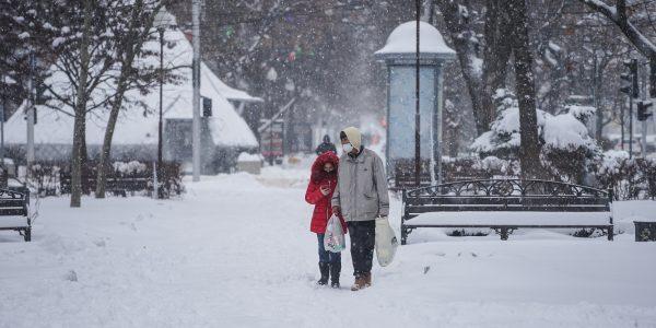В Краснодаре в ночь на 20 января похолодает до -15°С