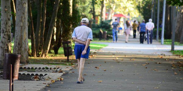 Власти Краснодара хотят вернуть в муниципальную собственность «Тропу здоровья»