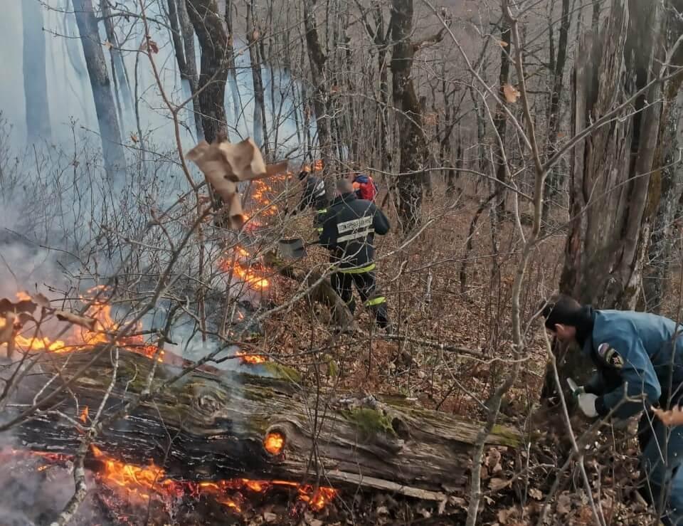 В Сочи горит лес в районе аула Малый Кичмай
