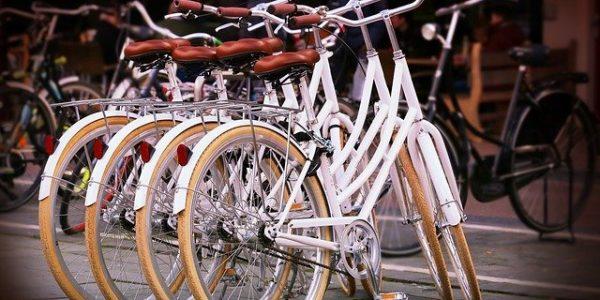 В Сочи опробуют систему использования экологичного транспорта
