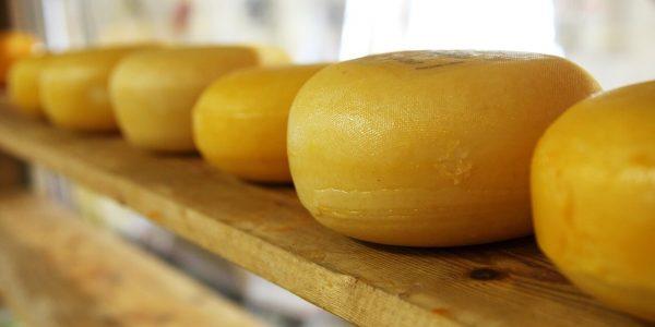 В России назвали лучший адыгейский сыр